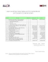 Báo cáo tài chính quý 3 năm 2007 - Công ty Cổ phần Đầu tư Phát triển Công nghệ Điện tử Viễn thông