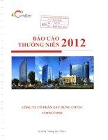Báo cáo thường niên năm 2012 - Công ty Cổ phần Xây dựng Cotec