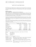 Báo cáo tài chính hợp nhất năm 2009 (đã kiểm toán) - Công ty Cổ phần Sản xuất Thương mại May Sài Gòn