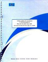 Báo cáo tài chính hợp nhất năm 2009 (đã kiểm toán) - Tổng Công ty cổ phần Y tế Danameco