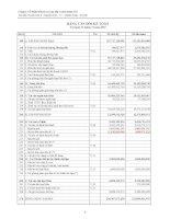 Báo cáo tài chính quý 4 năm 2010 - Công ty cổ phần Đầu tư và Xây lắp Constrexim số 8