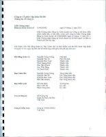Báo cáo tài chính hợp nhất quý 2 năm 2013 (đã soát xét) - Công ty Cổ phần Tập đoàn Hà Đô