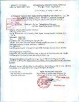 Báo cáo tài chính công ty mẹ quý 2 năm 2015 (đã soát xét) - Công ty cổ phần Dây Cáp Điện Việt Nam
