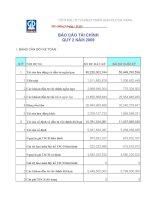 Báo cáo tài chính quý 2 năm 2009 - Công ty Cổ phần Đầu tư và Phát triển Giáo dục Đà Nẵng