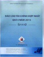 Báo cáo tài chính hợp nhất quý 4 năm 2015 - Công ty Cổ phần Xuất nhập khẩu Y tế Domesco