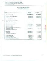 Báo cáo tài chính hợp nhất quý 3 năm 2010 - Công ty Cổ phần Dược phẩm Viễn Đông