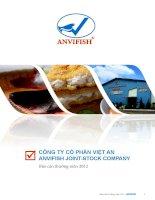 Báo cáo thường niên năm 2012 - Công ty Cổ phần Việt An