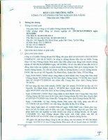 Báo cáo thường niên năm 2015 - Công ty Cổ phần Chứng khoán Đà Nẵng