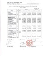 Báo cáo KQKD hợp nhất quý 1 năm 2014 - Tổng Công ty Cổ phần Đầu tư Phát triển Xây dựng