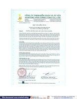Báo cáo tài chính hợp nhất năm 2008 (đã kiểm toán) - Công ty Cổ phần Đại Thiên Lộc
