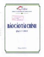 Báo cáo tài chính quý 1 năm 2011 - Công ty Cổ phần Xây dựng Cotec