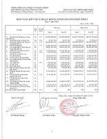 Báo cáo KQKD hợp nhất quý 1 năm 2011 - Tổng Công ty Cổ phần Đầu tư Phát triển Xây dựng