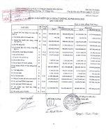 Báo cáo tài chính công ty mẹ quý 4 năm 2010 - Tổng Công ty Cổ phần Đầu tư Phát triển Xây dựng