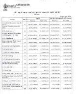 Báo cáo tài chính hợp nhất quý 2 năm 2015 - Công ty Cổ phần Xuất nhập khẩu Y tế Domesco