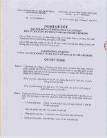 Nghị quyết Đại hội cổ đông bất thường ngày 13-01-2011 - Công ty cổ phần Đầu tư Hạ tầng Kỹ thuật T.P Hồ Chí Minh