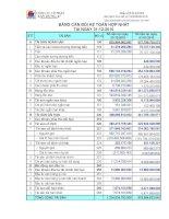 Báo cáo tài chính hợp nhất năm 2010 (đã kiểm toán) - Công ty Cổ phần Xây dựng 47