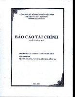 Báo cáo tài chính công ty mẹ quý 1 năm 2013 - Công ty Cổ phần Đầu tư Phát triển Cường Thuận IDICO