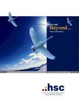 Báo cáo thường niên năm 2008 - Công ty Cổ phần Chứng khoán Thành phố Hồ Chí Minh