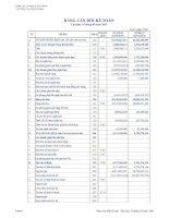Báo cáo tài chính quý 1 năm 2011 - Công ty Cổ phần Nhựa Đà Nẵng