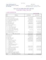 Báo cáo tài chính quý 4 năm 2009 - Công ty Cổ phần Nông dược H.A.I