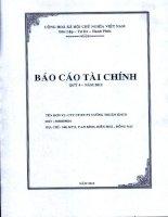 Báo cáo tài chính công ty mẹ quý 4 năm 2012 - Công ty Cổ phần Đầu tư Phát triển Cường Thuận IDICO