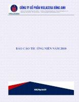 Báo cáo thường niên năm 2010 - Công ty Cổ phần Viglacera Đông Anh