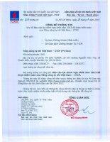 Báo cáo tài chính hợp nhất năm 2013 (đã kiểm toán) - Tổng Công ty Khí Việt Nam-CTCP