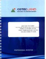 Báo cáo tài chính hợp nhất quý 2 năm 2012 - Công ty Cổ phần Đầu tư và Phát triển Nhà đất COTEC