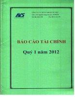 Báo cáo tài chính quý 1 năm 2012 - Công ty Cổ phần Chứng khoán Âu Việt