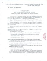 Nghị quyết đại hội cổ đông ngày 11-9-2010 - Công ty Cổ phần Chế tạo Bơm Hải Dương
