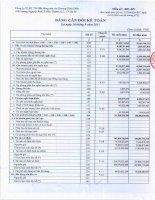 Báo cáo tài chính quý 3 năm 2013 - Công ty Cổ phần Đầu tư Thương mại Bất động sản An Dương Thảo Điền
