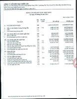 Báo cáo tài chính hợp nhất quý 2 năm 2012 - Công ty Cổ phần Đại Thiên Lộc