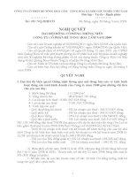 Nghị quyết đại hội cổ đông ngày 28-03-2009 - Công ty Cổ phần Bê tông Hoà Cầm - Intimex