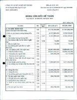 Báo cáo tài chính quý 2 năm 2013 - Công ty Cổ phần Kỹ nghệ Đô Thành