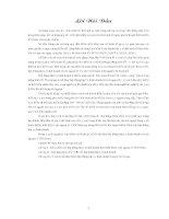 Tiểu luận tình hình thực hiện hợp đồng hợp tác kinh doanh