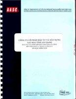 Báo cáo tài chính hợp nhất năm 2013 (đã kiểm toán) - Công ty Cổ phần Tập đoàn Sao Mai