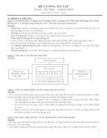 Đề cương ôn tập môn tin học THCS 2013