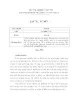 mẫu bài tập nhóm cho sinh viên