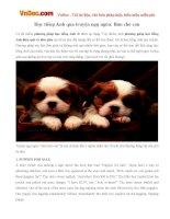 Học tiếng Anh qua truyện ngụ ngôn: Bán chó con