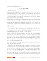 Soạn bài lớp 11: Tác giả Nguyễn Đình Chiểu