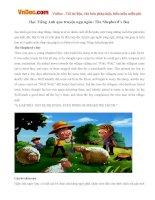 Học Tiếng Anh qua truyện ngụ ngôn: The Shepherd's Boy
