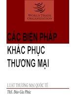 Bài giảng luật thương mại quốc tế bai 10 BPG các biện pháp khắc phục thương mại bán phá giá