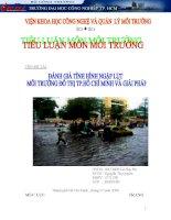 Tiểu luận Đánh giá tình hình ngập lụt môi trường đô thị thành phố Hồ Chí Minh và giải pháp