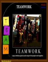 Kỹ năng làm việc nhóm hiệu quả (teamwork)
