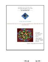 Luận văn Điều chế bột HA từ vỏ sò và thử nghiệm hoạt tính hấp phụ với ion đồng (II)
