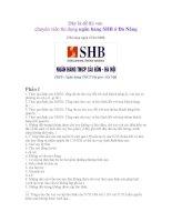 Đề thi vào chuyên viên tín dụng ngân hàng SHB ở đà nẵng