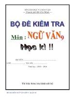TUYEN TAP NHUNG DE THI HAY  HKII  VAN 9