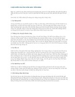 5 đặc điểm của ỨNG VIÊN GIÀU TIỀM NĂNG