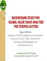 BACKGROUND STUDY FOR GLOBAL VALUE CHAIN ANALYSIS FOR STRIPED CATFISH