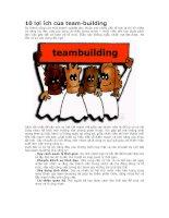 10 lợi ích của team building